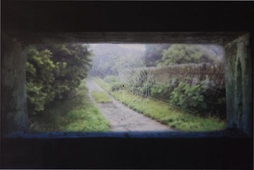 進藤 環 「溢れひたす糸」壱岐島(いきのしま)、長崎県, 2015, Type C print