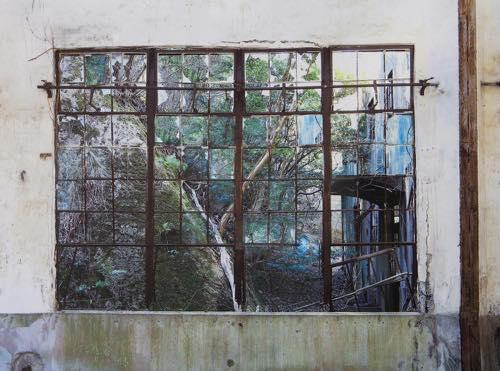 進藤 環 「しずかに辷りはじめる」大久野島(おおくのしま)、広島県, 2015, Type C print