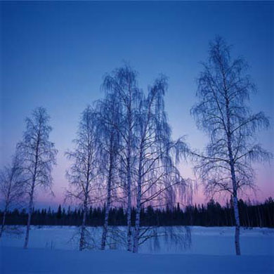 Eiji INA - 北への扉 ヘルシンキ [ Finland  レビィ 氷点下25度の夕景 ] , 2001