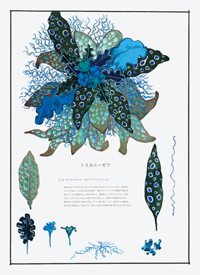 齋藤芽生, 毒花図鑑「トリカエーゼラ」, アクリル・紙, 57.5x40.2cm