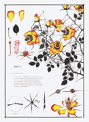 齋藤芽生, 毒花図鑑「監禁バラ」, アクリル・紙, 57.5x40.2cm