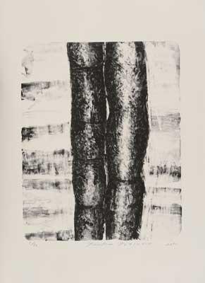 Toeko TATSUNO - 2011-P001   AIWIP-1  ed.1/30  2011  リトグラフlithograph on paper 53.0×43.0(76.0×56.5)cm