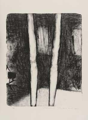 Toeko TATSUNO - 2011-P007   AIWIP-7  ed.1/35  2011  リトグラフlithograph on paper 58.0×47.0(76.0×56.5)cm