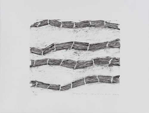 Toeko TATSUNO - 2012-P001  AIWIP-20  2012  リトグラフlithograph on paper 32.0×40.0(50.0×66.0)cm