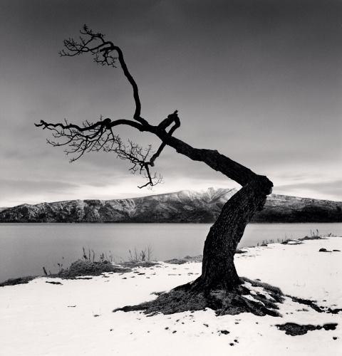 Michael KENNA - Kussharo Lake Tree,Study12, Kotan,Hokkaido,Japan. 2008 (C) Michael Kenna / RAM