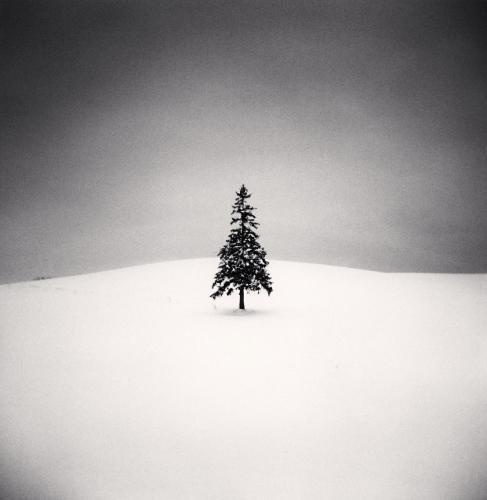 Michael Kenna - Lone Tree, Study 2, Bibaushi, Hokkaido, Japan. 2004