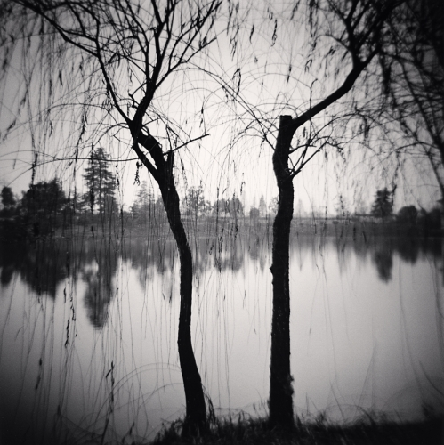 Michael Kenna - Afternoon Trees, Shexian, Anhui, China. 2008
