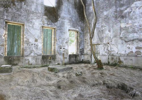 進藤 環 - 針の梢とかげのない底, 2014, タイプCプリント