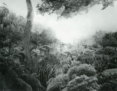 進藤 環 - Cradle of deep III, 2011, ゼラチン・シルバー・プリント