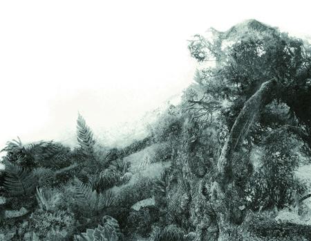 進藤 環 - Cradle of deep IV, 2011, ゼラチン・シルバー・プリント