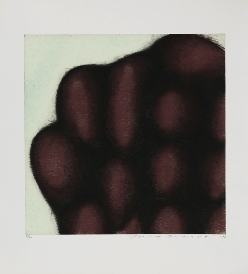 Toeko TATSUNO July-2-96 etching, aquatint
