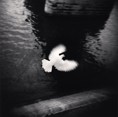 Michael Kenna_White Bird Flying,Paris,France.2007.jpg