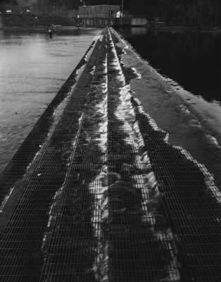 Toshio SHIBATA - #2317 MCA Chicago_South Holston Dam, Sullivan County, TN , 1997 , Gelatin silverprint