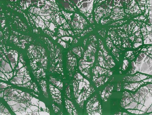 Aya MORITA「森羅-毛管」2015  35.5×45.0cm  切り絵、アクリル絵の具