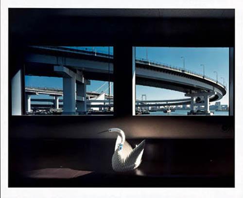 Masataka NAKANO - TOKYO WINDOWS, file020 9 Jan. '04 Kaigan Minato-ku