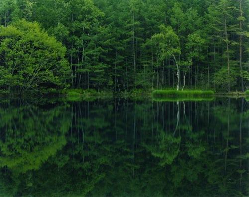 萱原 里砂 - 「mirror-08  (長野県 御射鹿池・みしゃかいけ)」, 2010, 20×24inch, Type C print