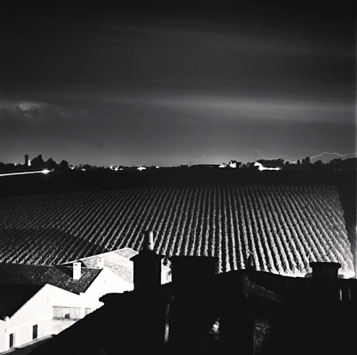 Michael Kenna - Chateau Lafite, Study 17, Bordeaux, France, 2012