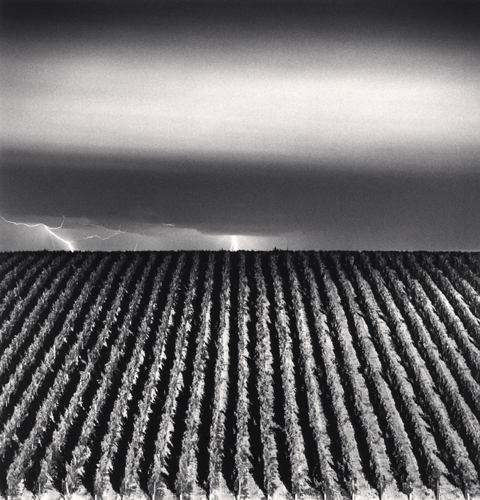 Michael Kenna - Chateau Lafite, Study 6, Bordeaux, France. 2012