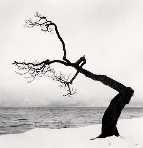 Michael Kenna - Kussharo Lake Tree, Study 15, Kotan, Hokkaido, Japan. 2009